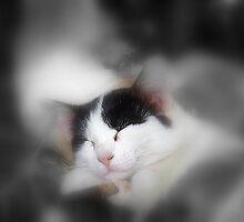 Sweet sleep by AleFletcher