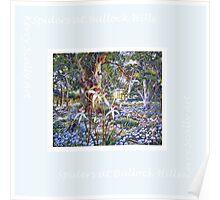 Scarf - Australian wildflowers and bush Poster