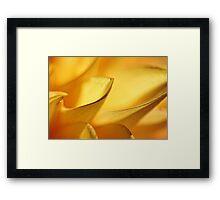 dahlia petals Framed Print