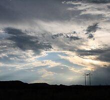 Pylon silhouette in Madikwe by Lauren Banks