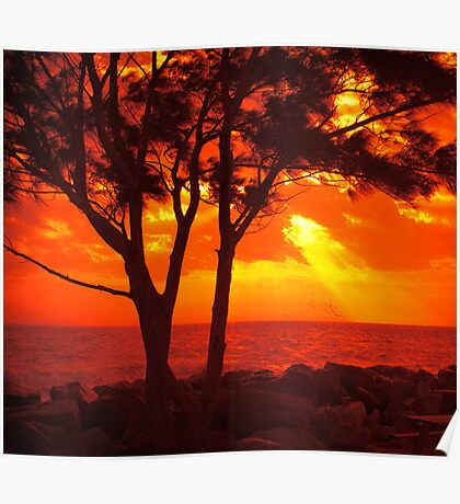 Red sunset. Poster