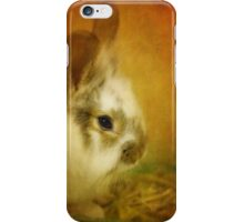 Memories of Watership Down iPhone Case/Skin