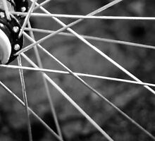 Spokes of a bike wheel by Tracie DeCecco