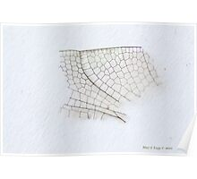 dragonfly wing netting Poster