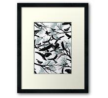 Blackbirds Framed Print