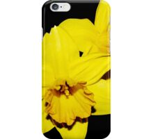 Double Daffodil iPhone Case/Skin