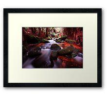 """""""Little Forester River-2"""" Framed Print"""