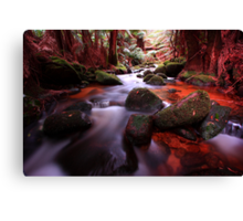 """Little Forester River-2"" Canvas Print"