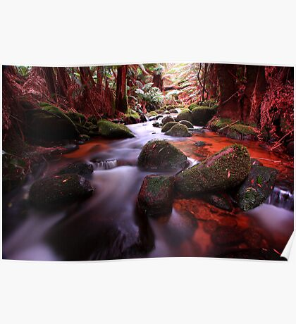 """Little Forester River-2"" Poster"