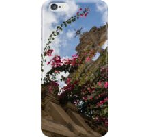 Sky  Blossoms iPhone Case/Skin
