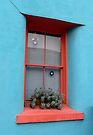 The Orange Trimmed Window by Lucinda Walter