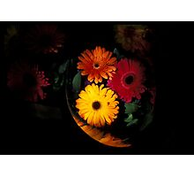 Flowers in plastic, Upper West Side, New York City Photographic Print
