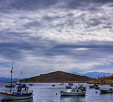 Boats in the Bay by Tom Gomez