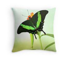 Swallow Tail Throw Pillow