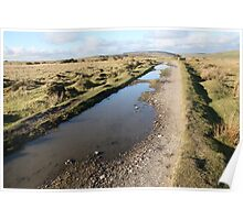 Bodmin Moor Track near Cheesewring Poster