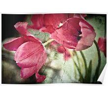 The Forgotten Garden - Tulips Poster