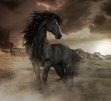 Chitto Black Spirit Horse by Shanina Conway