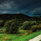 Poprad river in Poland by Patrycja Makowska