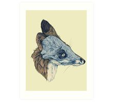 Laminate Pet Animal, Snowmine Art Print