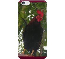 From Key West with love iPhone Case/Skin