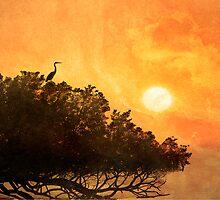 Sundowner by Stephen Warren