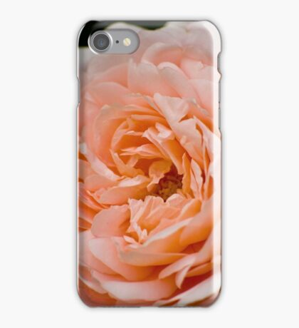 Peach  iPhone Case/Skin