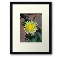 ©NS Just Yellow IA. Framed Print