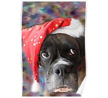 I've Been Good... Where's My Treat? -Boxer Dogs Series- Poster