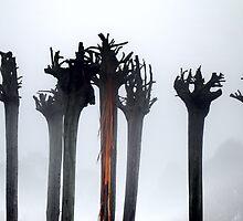 Trees grow upwards roots by xura