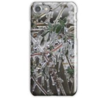 Nature's Decorations iPhone Case/Skin