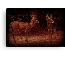 Illuminated Pair Canvas Print