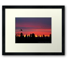 Winter Evening Framed Print