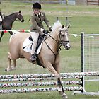 Moss Vale District Showjumper 3 by Samantha Bailey