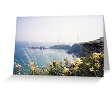 Carrick a-rede, Northern Ireland Greeting Card