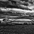 Sydney Harbour B&W by David Petranker