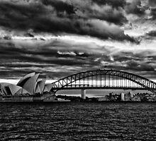 Sydney Harbour B&W by David Petranker