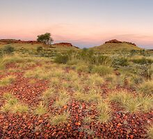 Spinifex Horizon by Artimagery