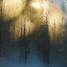 Window Steam - Morning Glow by Janice E. Sheen