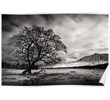 View over Loch Tulla Poster