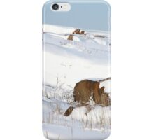 Snowed Rocks, Churchill, Canada iPhone Case/Skin