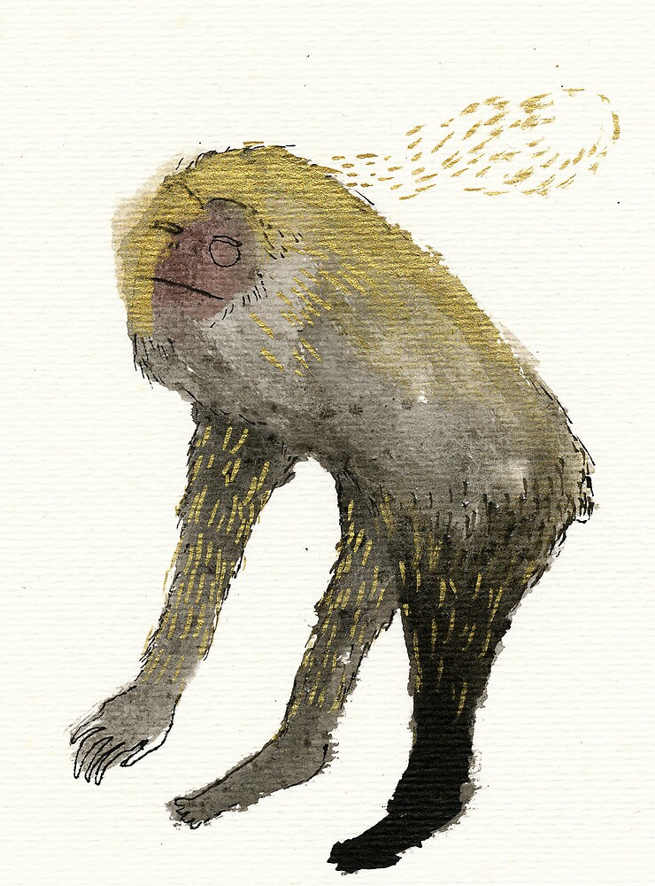 Perplexed Monkey by benconservato