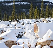 Autumn in The Rockies: The First Snow: Jasper National Park by Carole-Anne