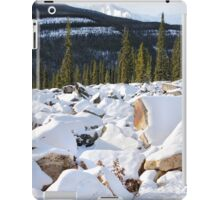 Autumn in The Rockies: The First Snow: Jasper National Park iPad Case/Skin