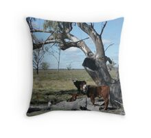 Calves Sheltering Under Tree - Oxley Station Throw Pillow