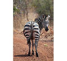 Plains Zebra, Akagera National Park, Rwanda Photographic Print