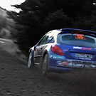 rally GB Wales  by DaveButt