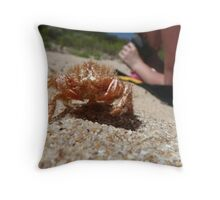 Crab Husk on Beach - Crayfish Bay Throw Pillow