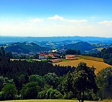 Panoramic view into a summertime scenery by Patrick Jobst