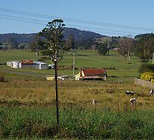 Small town in Tasmania by WolfieRankin