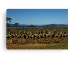 Old convict built fence in Tasmania Canvas Print